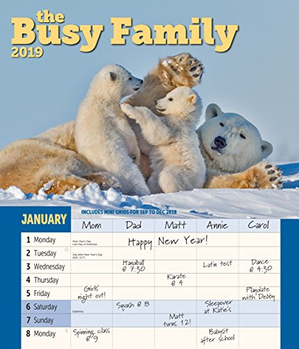 Busy Family Wall Calendar 2019 Monthly January-December 12'' x 14
