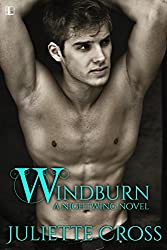 Windburn (Nightwing series Book 2)