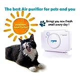 The best air purifier for pet PhotoPlasma Mini pet Purifier smell of sunshine