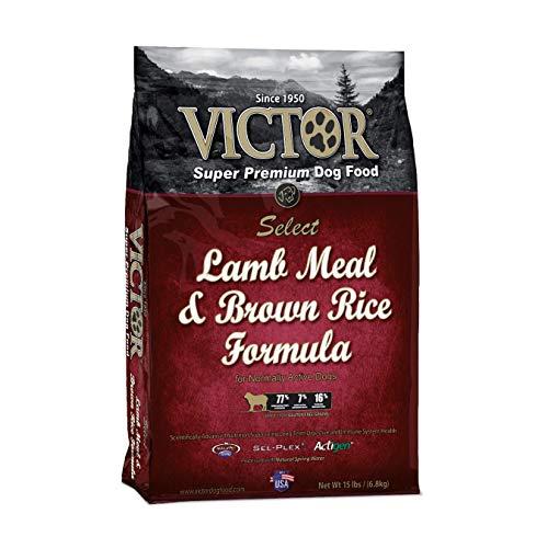 Victor Lamb Meal And Brown Rice Formula Dry Dog Food, 15 Lb. Bag (Rice Dry Brown Formula)