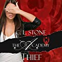 Thief: The Academy: The Scarab Beetle, Book 1 Audiobook by C. L. Stone Narrated by Megan Tusing