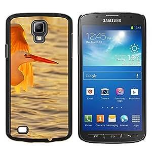 TECHCASE---Cubierta de la caja de protección para la piel dura ** Samsung Galaxy S4 Active i9295 ** --Cigüeña Océano de sol Sol Verano