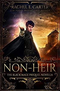 Non-heir by Rachel E. Carter ebook deal