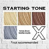 Keracolor Clenditioner Color Depositing Conditioner Colorwash, Silver Blue, 12 fl oz