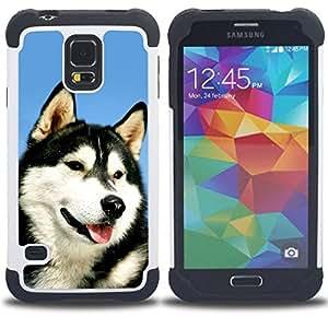 /Skull Market/ - Huskies Husky Dog Paws Cute For Samsung Galaxy S5 I9600 G9009 G9008V - 3in1 h????brido prueba de choques de impacto resistente goma Combo pesada cubierta de la caja protec -