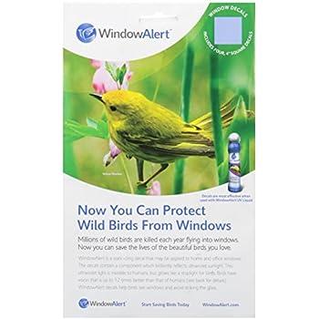 Amazoncom Dalen Protective Window Decal Pack Garden Outdoor - Window alert hummingbird decals amazon