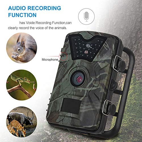 Scouting Camera Camo - Wildlife Trail Camera,12MP 1080P HD Hunting Cam with 940nm IR LEDs Night Vision 2.4'' LCD Display Camouflage Scouting Camera with IP66 Waterproof