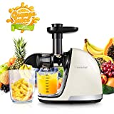 AMZCHEF Slow Masticating Juicer Extractor Professional Machine Deal