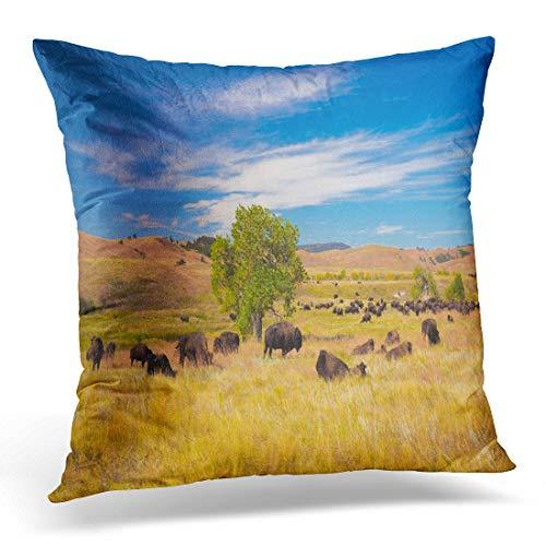 Emvency Throw Pillow Cover Buffalo Bison on Grasslands Custer State Park South Dakota Decorative Pillow Case Home Decor Square 18