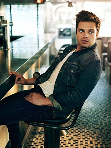 Sebastian Stan Actor Star Fabric Cloth Rolled Wall Poster Print