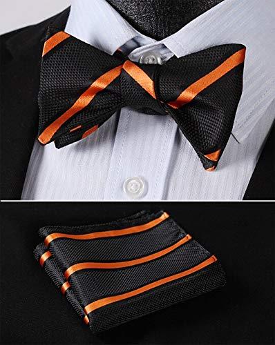 Best Design Bs316n - Corbata de seda para hombre, diseño de rayas ...