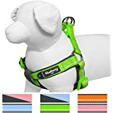 Blueberry Pet Soft & Comfy New 3M Reflective Step-in Pastel Color Padded Dog Harness, Chest Girth 40cm-50cm, Baby Green, Small, Adjustable Harnesses for Dogs