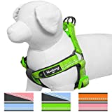 Blueberry Pet 4 Colors Soft & Comfy New 3M Reflective Step-in Pastel Color Padded Dog Harness, Chest Girth 15.5' - 19.5', Baby Green, Small, Adjustable Harnesses for Dogs