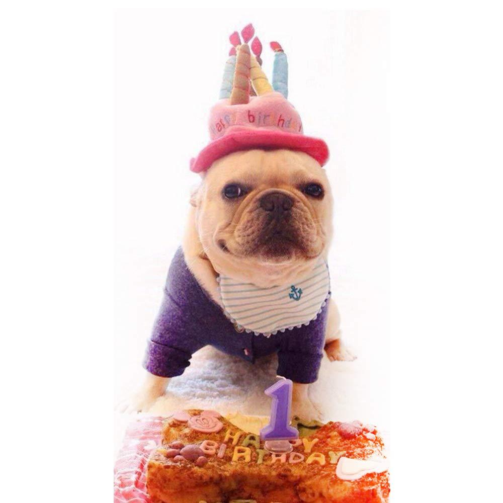 Super Fliyeong Birthday Cake Hat Pet Birthday Hat Puppy Party Hat Funny Birthday Cards Online Necthendildamsfinfo