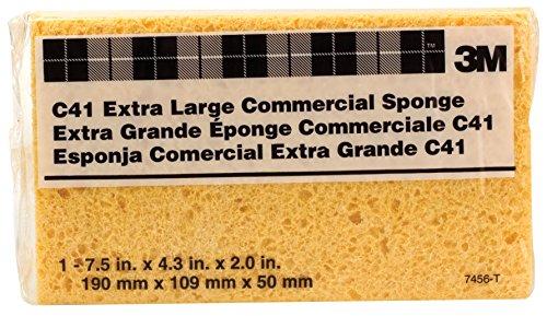 Large Sponge - 4