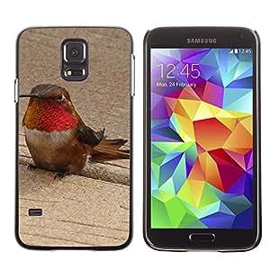 Etui Housse Coque de Protection Cover Rigide pour // M00113274 Allen Colibrí Colibrí Colibrí // Samsung Galaxy S5 S V SV i9600 (Not Fits S5 ACTIVE)