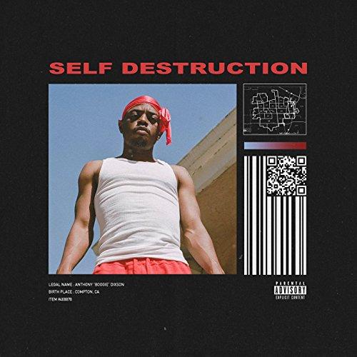 Self Destruction [Explicit]