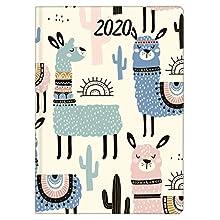 Idena 11447 Nature Lama - Mini agenda 2020, A6, 1 unidad