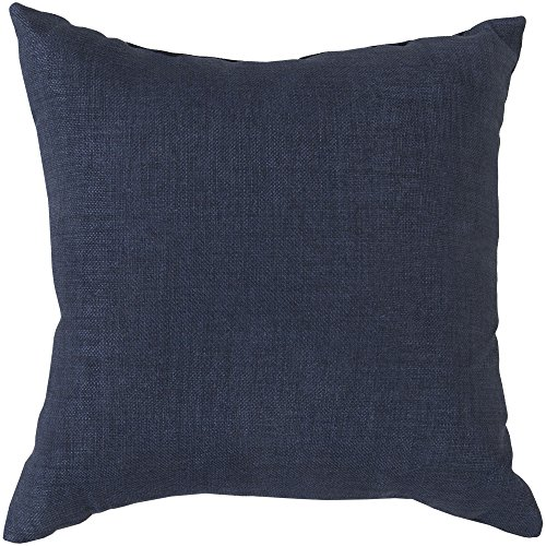 Surya ZZ405-2222 Indoor Outdoor Pillow, 22-Inch by 22-Inch, Navy
