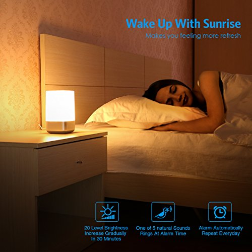 AMIR Wake-Up Light Beside Lamp Alarm Clock with Sunrise Simulation, 5 Natural Sounds, Rechargeable, Touch Sensor Multicolor Dimmable Night Light, Simple Design and Healthy Style (Non-Plug in) by AMIR (Image #2)