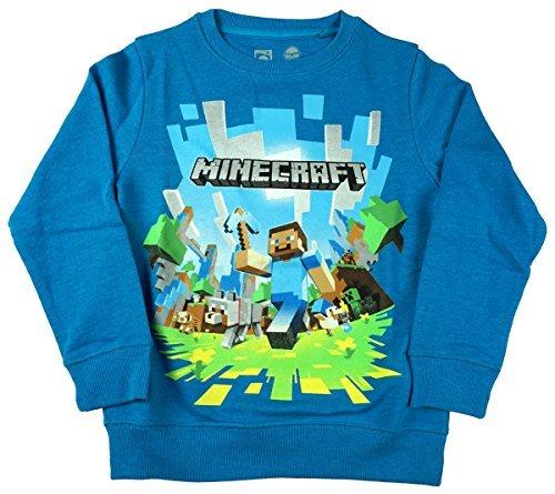 Mojang Niños Oficial Minecraft Creeper SPRITES Jersey Sudadera Camiseta Talla 5 to 6 años: Amazon.es: Ropa y accesorios
