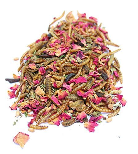 All Natural Mealworm and Herb Treat for Backyard Chickens, Non-GMO, USA Raised, Healthy Backyard Chicken Feed and Supplies, BEE A Happy Hen (8 pounds) from Pampered Chicken Mama