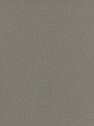 Canson Mi-Teintes Tinted Paper (Steel Gray) 4 pcs sku# ()