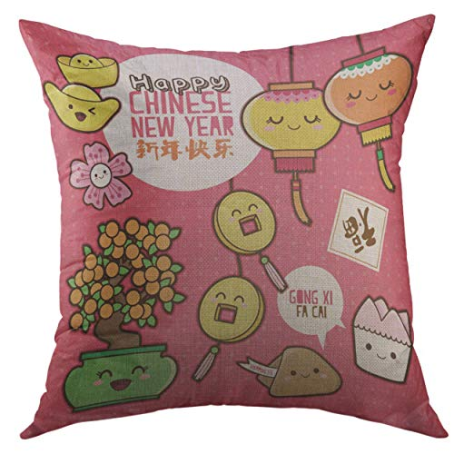(Mugod Pillow Cases Flower Orange Cookie Chinese New Year Cute Cartoon Design Translation Happy Good Fortune Pink Money Throw Pillow Cover for Men Women Youth Cushion Cover 20x20 Inch)