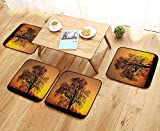 Leighhome Comfortable Chair Cushions Decor Old Oak in The Sunset Horizon Golden Sunlight Countryside Nature Picture Print Reuse can be Cleaned W17.5 x L17.5/4PCS Set