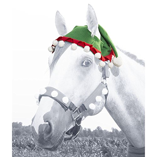 JT International Holiday Elf Horse Hat