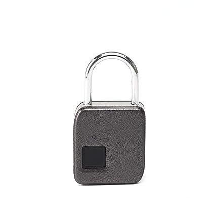Huella digital inteligente Candado Impermeable Aleación de zinc Cerradura de seguridad Dedo Cerradura de puerta biométrica