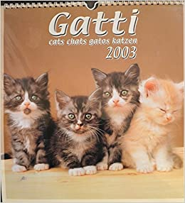 Gatti, cats, chats, gatos, katzen. Calendario 2003.: N.A. -: Amazon.com: Books