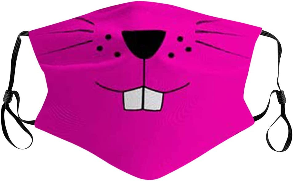 Comfortable Face Balaclava for Students Funny Cool Cartoon Animal Cute Reusable Adjustable Printed Plane Earloop Lightweight for School