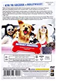 Dr. Dolittle: A Tinsel Town Tail (2009) (English audio. English subtitles)
