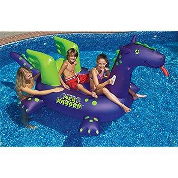 Amazon.com: JCNS Flotadores de piscina de caballo de mar ...