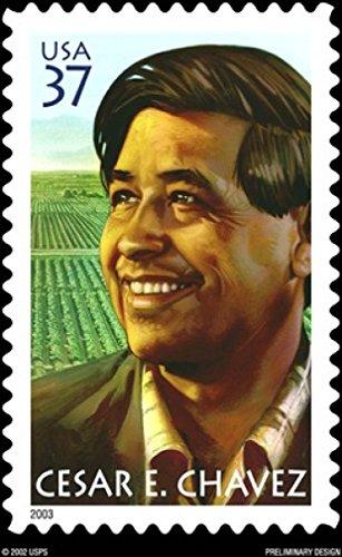 Chavez Framed - Cesar Chavez 18X24 Poster New! Rare! #BHG761158