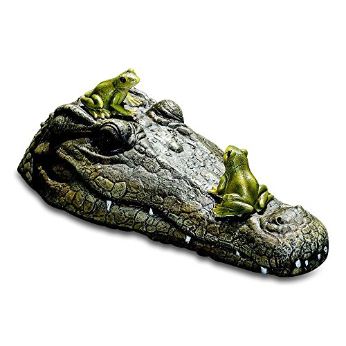 Whole House Worlds The Floating Crocodile Head with 2 Frogs, Garden Art or Decoy for Water, Pools and Ponds, Over 1 Ft Long, (32cm)