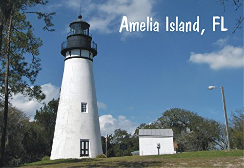 - Amelia Island, Lighthouse, Florida, FL, Historic Places, Souvenir Magnet 2 x 3 Photo Fridge Magnet