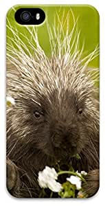 iPhone 5 iPhone 5s 3D Case,Animal-Porcupine Case for iPhone 5/5s
