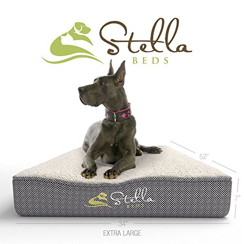 Stella Beds Elevated Memory Foam Orthopedic Dog Bed with Removable Cover - Extra Large 52-Inch