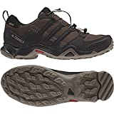 adidas outdoor Men's Terrex Swift R GTX Brown/Black/Simple Brown Hiking Shoes - 9 D(M) US