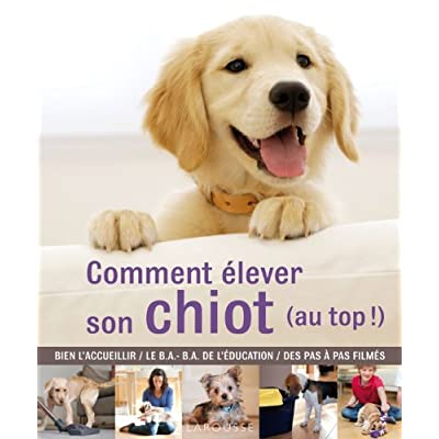 comment elever son chiot (au top !)