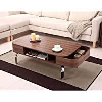 Furniture of America Lawson Modern 2-Drawer Coffee Table
