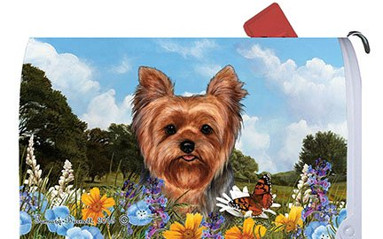 - Best of Breed Yorkie Puppy Cut Dog Breed Mail Box Cover