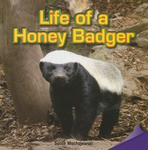 Life of a Honey Badger (Infomax Common Core Readers)