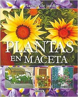 Plantas En Maceta (Plantas De Jardín): Amazon.es: Echagüe, Jorge, Susaeta, Equipo: Libros