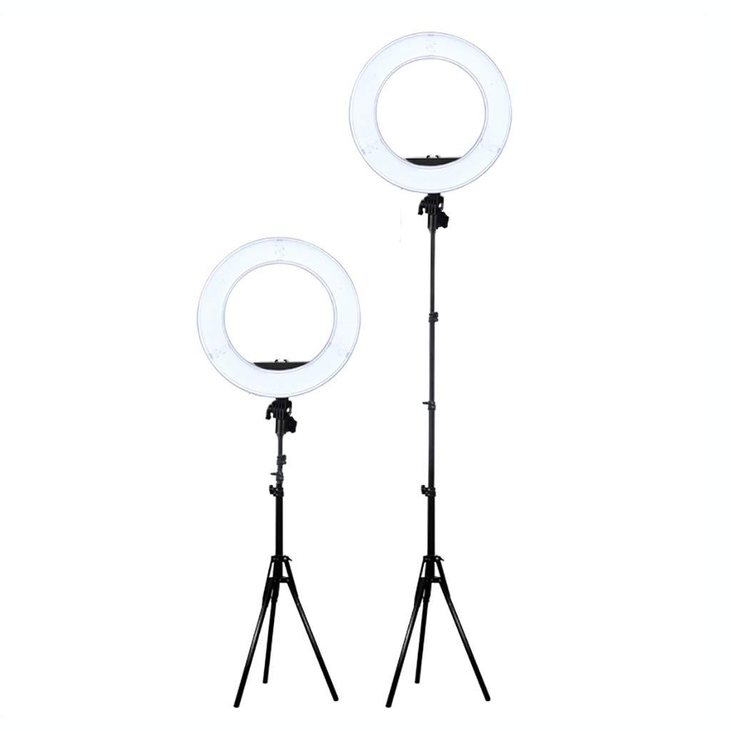 Peaceip US 19インチのリングライト調光は三脚の立場と導かれました電話ホルダーの卓上が付いている小型導かれたカメラライトは2つの柔らかいライトと導きました   B07MV8VJLN