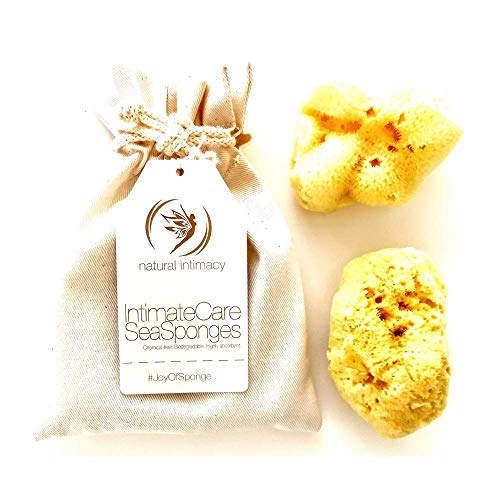 (IntimateCare Sea Sponges - 2 Large Bleached Silk Sea Sponges- with Artisinal Organic Cotton Gift Bag 2LB)