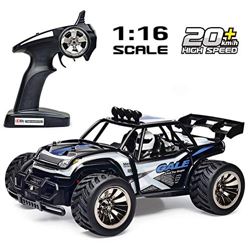 Tecesy RC Cars, 1/16 Scale 4WD Off-Road Remote Control Car, High Speed 20Mph Traxxas RC Truck/Monster Truck with LED, Best RC Buggy Toy for Adults & Kids (White & Blue) (Best Indoor Rc Car)
