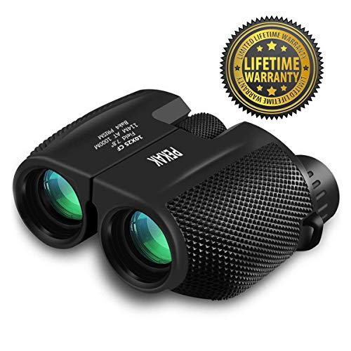10x25 Mini Compact Binoculars for Adults with Low Light Night Vision,Portable Folding Pocket Banockulers - Lightweight Small Waterproof Binocular for Hunting Bird Watching Traveling Sports Concerts (Best Bird Watching Binoculars 2019)
